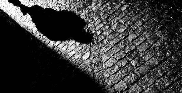 A sombra do negacionismo