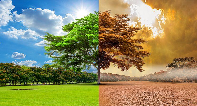Estado de Emergência Climática preocupa ambientalistas
