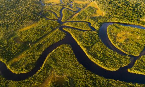 Amazônia: a ciência pode ajudar a parar a deterioração, mas não sozinha